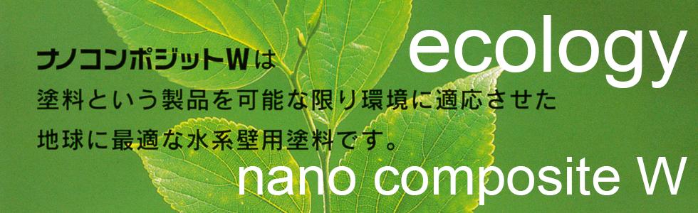 nanocompojito_w05