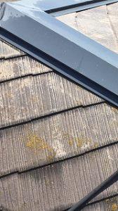 塗装、時期、屋根 (2)