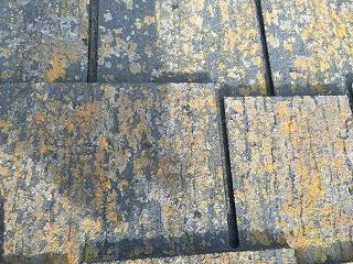 印西市、外壁塗装屋根塗装