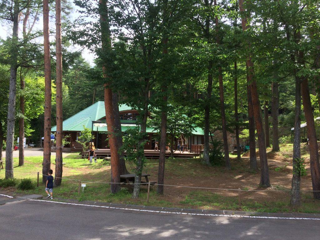 長野県,キャンプ (3)