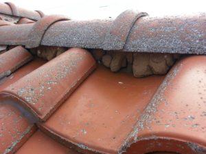 印旛郡、栄町、外壁塗装、屋根塗装 (1)